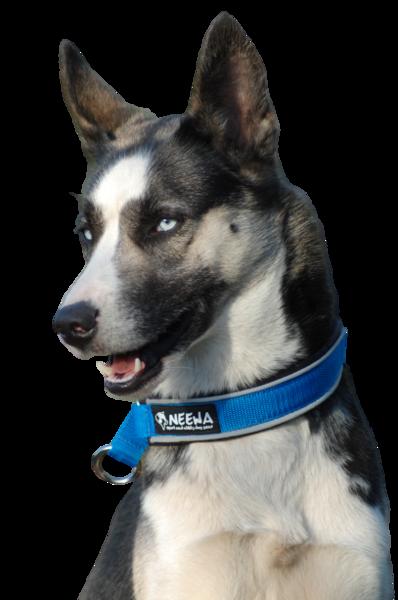 Semi-choke collar   verstelbare semi-slip halsband