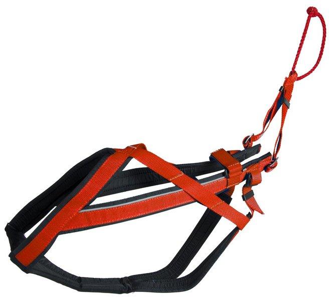 Adjustable harnas