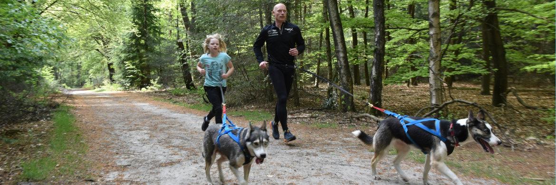 Hardlopen met de hond is geschikt voor jong en oud *eigen foto/honden