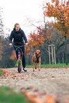 Dog adapter voor de Yedoo | Lijnuithouder