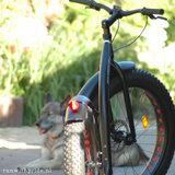 Kickbike FAT MAX_