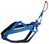 Neewa adjustable harness
