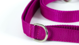Adjustable leash