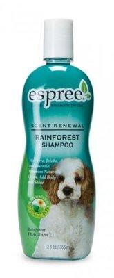 Rainforest shampoo