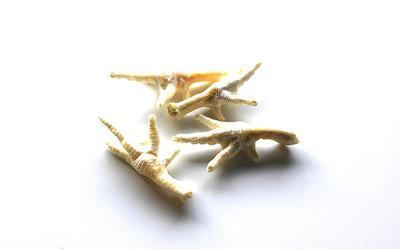Kippenpoot honing