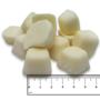 ICEPAW Terra-X Nuggets met Zalmolie | Energie bonbon